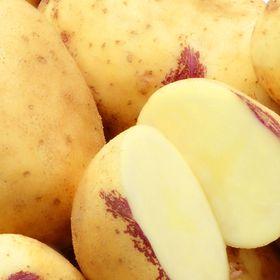 Potandon Produce