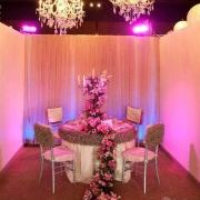 Dream Weddings by All party Rentals