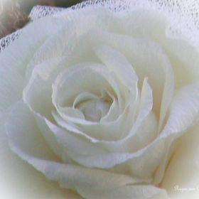 RosesdePapier