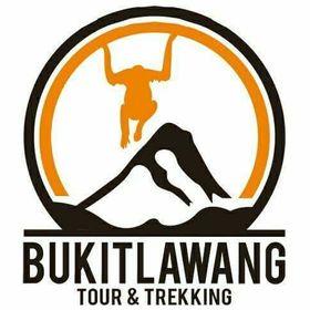 Bukit Lawang Tour Trekking
