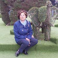 Loredana Palazzi