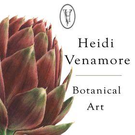 Heidi Venamore