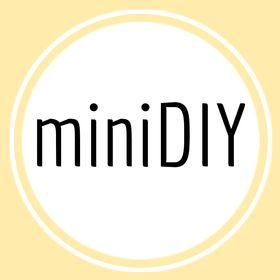 miniDIY