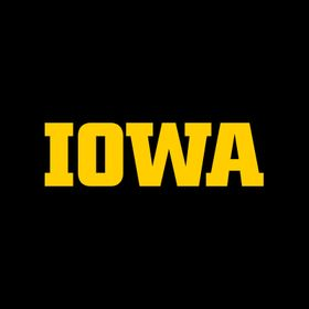 Collegiate University of Iowa S//S UNIV OF IOWA TIGER HAWK 1//4 ON MINI DOG TAG