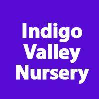 Indigo Valley Nursery, Dubai, UAE