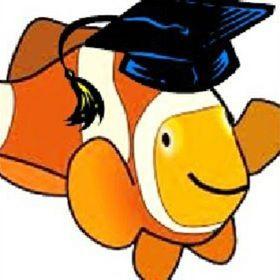 Steponafish Coaching