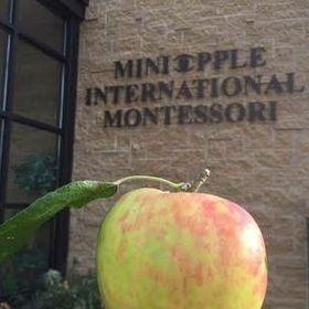 Miniapple Int'l Montessori Schools