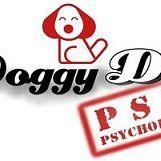 Doggy Dog Psi Psycholog