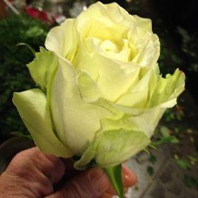 Fleurtje Fleurop