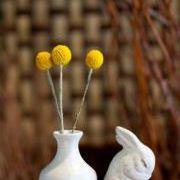 Blooms Hattiesburg