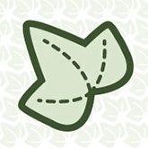 Paper Ivy