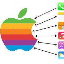 uae apple