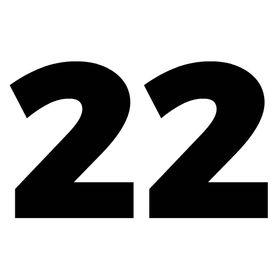 22FPS