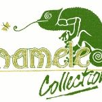 Chameleon Collection Wallpapers And Fabrics