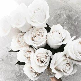 Genial Belle Roses Closet