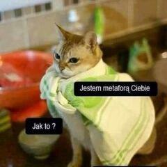 Jula Kryńska
