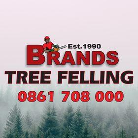 Brands Tree Felling