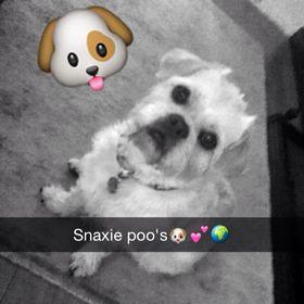 Maisie Blackett💞