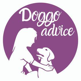 Doggo Advice: Easy Dog Training Tips