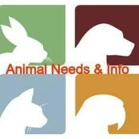 Animal Needs & Info