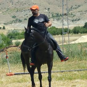 Hasan Gündoğar