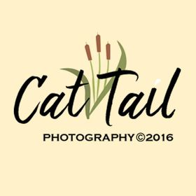 Cat Tail Photography