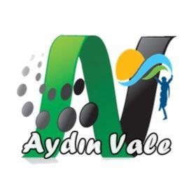 Aydın Vale