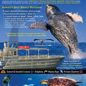 Kohala Ocean Tours