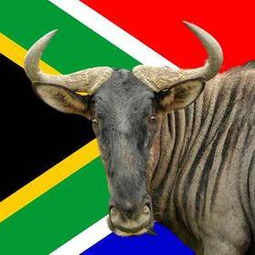 BlueGnu South Africa