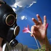 Environment Guru