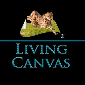 Living Canvas Home Decor