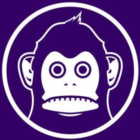 monkeyman by walter dean myers
