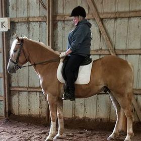 HorseWasMyFirstWord.com