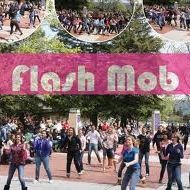 Flash Mob Pinner (FMP)