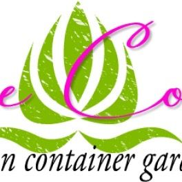 Divine Containers