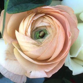 Eliza Rose Floral Design