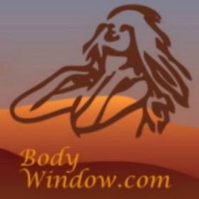 The Body Window