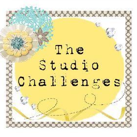 The Studio Challenge Blog