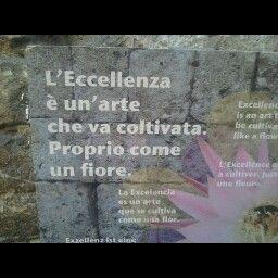 Grazia Bianchi