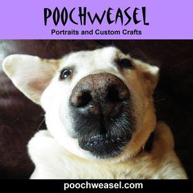 Poochweasel