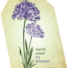 Earth Seed to Bloom