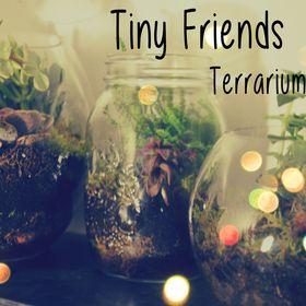 Tiny Friends Terrariums