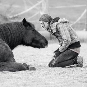 Tash-Horseexperience