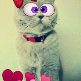 Katty H..
