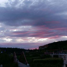 Doros Hajnal