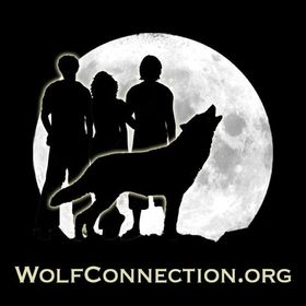 Wolf Connection