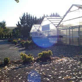 Ashland Greenhouses