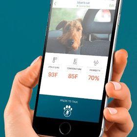 iMyK9 Pet Monitoring System