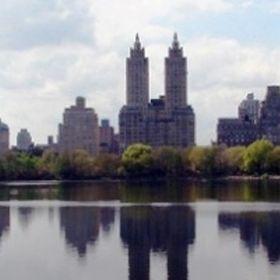 NYC Broker | Mitchell Hall