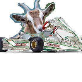 Karting goaten